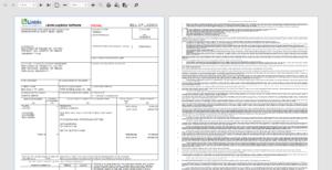 custom invoice - Comercio Exterior y Aduanas, REGULACIONES ADUANALES